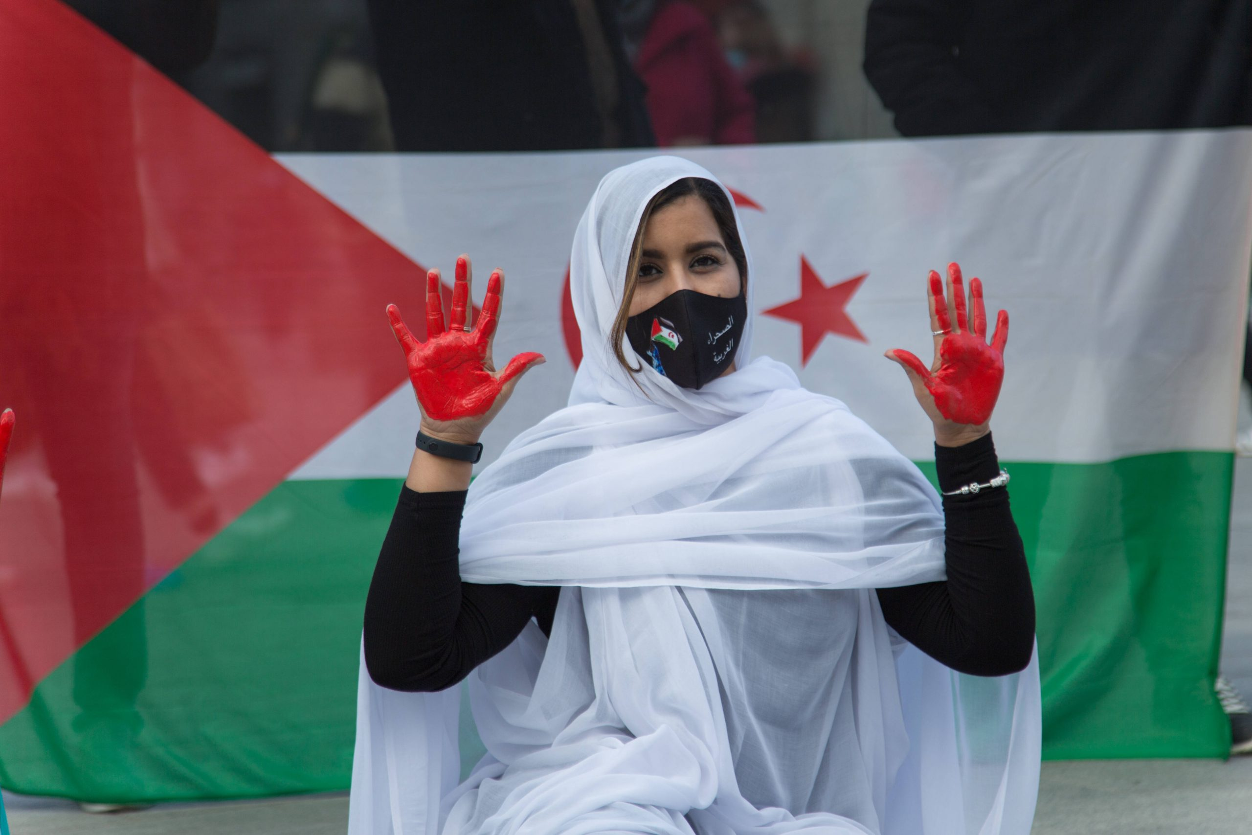 Western Sahara – A Forgotten Conflict in Africa's Last Colony